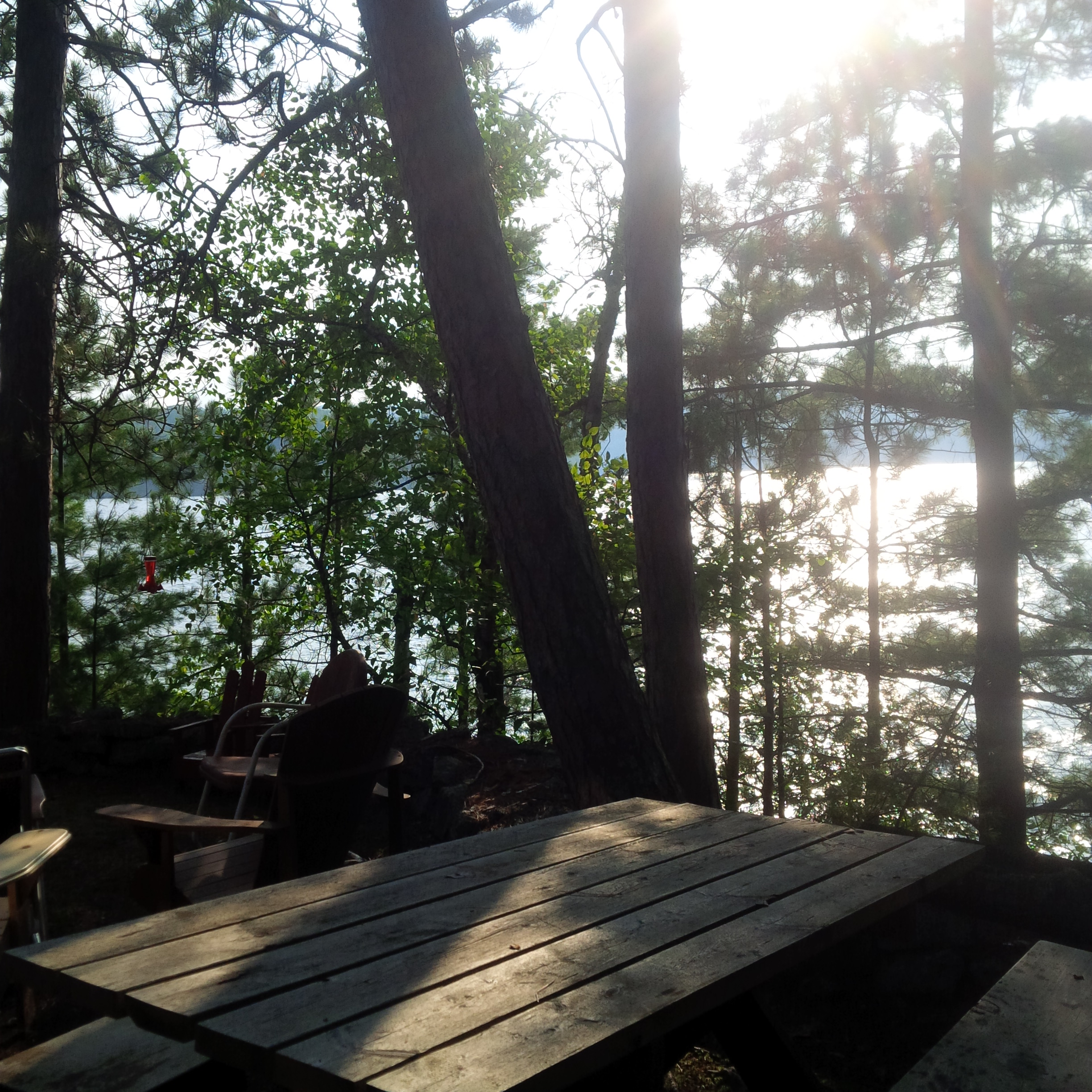 WHAT I ATE WEDNESDAY: Cottage Eats